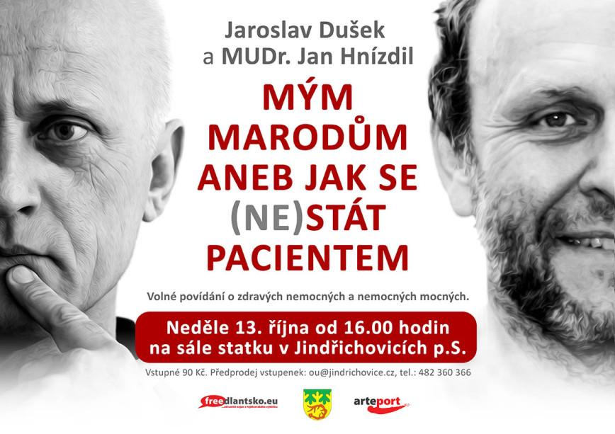 plakat_hnizdil_dusek_jindrichovice_arteport_2013_MAIL